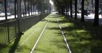 Przebudowa torowisk tramwajowych w Szczecinie - Al. Piastów
